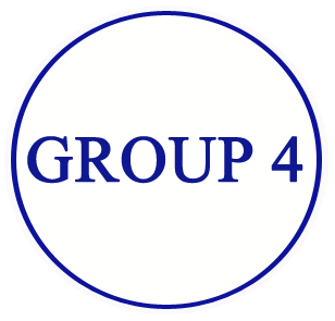 Image result for group 4