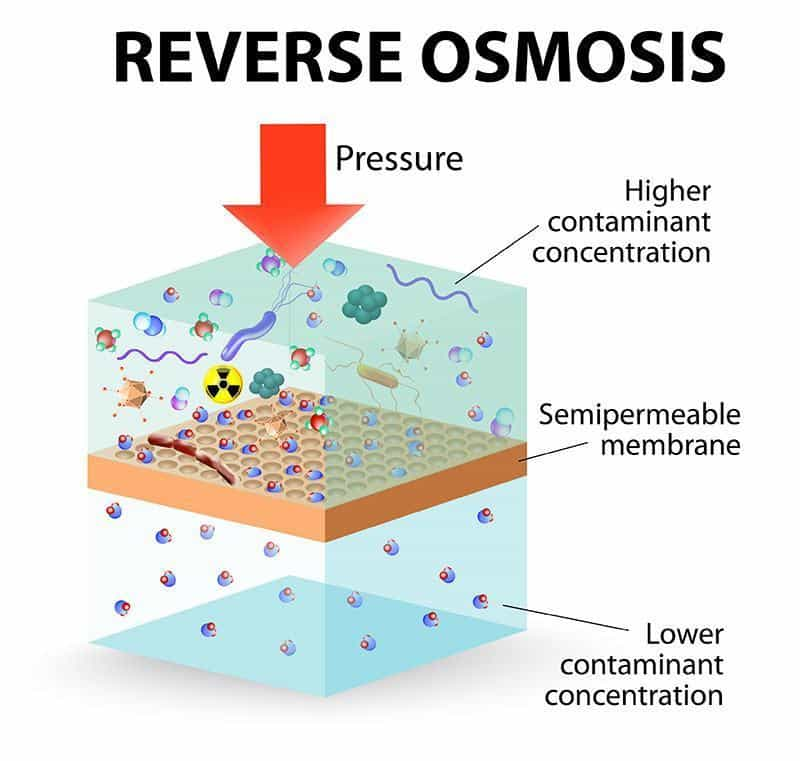 osmosis: what is it and how does it occur in general essay Read this essay on osmosis this can occur in gases, liquids, and solids osmosis is a type of diffusion that allows water molecules to move through a.