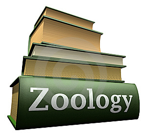 Photo of TNPSC VAO Zoology Study Materials In Tamil PDF Download