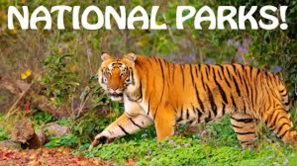National Parks In India | Exam Study Notes