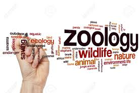 Photo of 6th To 10th Zoology Materials   TNFUSRC And Group 2 Study Materials  